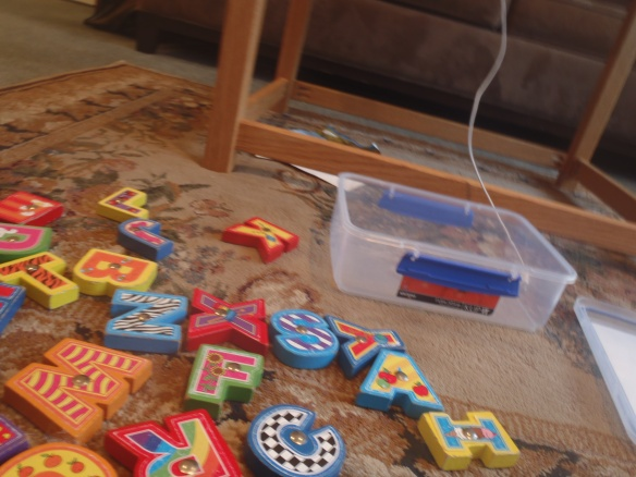 Here's one of my favorite toys from the toy library--a set of magnetic letters with a fishing pole. I know about 2/3 of the letters...the ones that have Sesame Street songs to match them, plus A for Audrey and B for Baby and D for Daddy and X....because I just like how that one sounds. I think Mama has even more fun singing the Sesame street songs than I do.