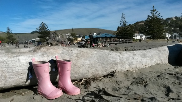Instead of the Pale Green Pants with Nobody Inside Them, we have the Bright Pink Gumboots with Nobody Inside Them.  The kids are amazingly cold tolerant when it comes to winter beach water, and Naomi decided that no boots were better than wet boots after a surprise wave filled them with water.