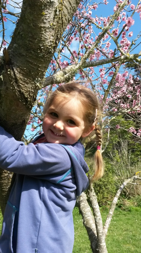 My Beautiful Baby, amongst the cherry blossoms.  We made little blossom babies with kowhai bodies and cherry bud heads, but their heads kept falling off.  I wonder if I looked like that when I was little?