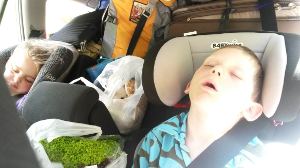 Two late nights and two early mornings set us up perfectly for sleepage during the second day of windy-road driving, and we arrived in Anakiwa rested and with all the stomach contents in place.