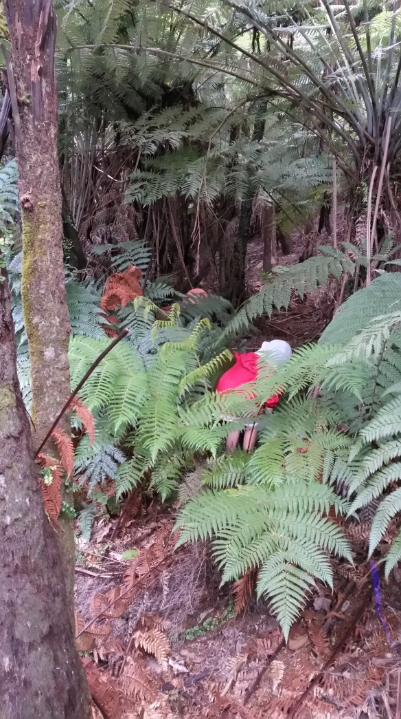 """""""Where, oh where has Milo gone? Where, oh where can he be? With his shirt of grey and his pants of green, oh where, oh where can he be?"""" Naomi and I sang the hide and seek song along the trail, finding Jeremiah and Milo camouflaged among the giant fern leaves."""