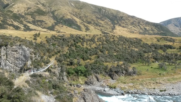 I like crossing rivers on bridges, and thankfully the two times the trail crossed the sizeable Waiau, there were beautiful swing bridges, complete with steep descents and accents on either side.
